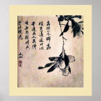 Pintura antiga chinesa, lychee poster