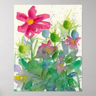 Pintura cor-de-rosa da flor da aguarela de Nigella Pôster