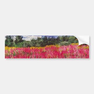 Pintura cor-de-rosa do tapete adesivo