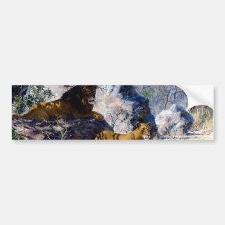 Pintura da natureza da leoa do leão adesivo