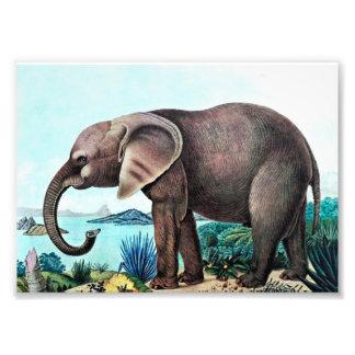 Pintura do vintage do elefante africano artes de fotos