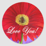 Pintura vermelha da flor da margarida - multi adesivo