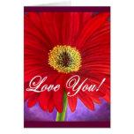 Pintura vermelha da flor da margarida - multi cartões