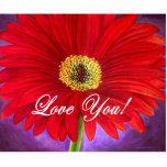 Pintura vermelha da flor da margarida - multi escultura de foto