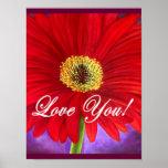 Pintura vermelha da flor da margarida - multi posters