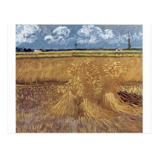 Pinturas de Van Gogh: Campo de trigo de Van Gogh Cartão Postal