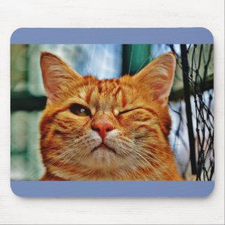 Pisc do gato de Mousepad