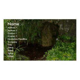 Piscina que captura águas de St Brigids santament Cartoes De Visitas