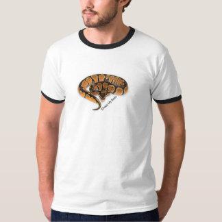 Pitão Regius Camiseta