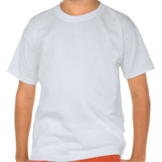 Pitbull de Brown Listras brilhantes do arco-íris T-shirts