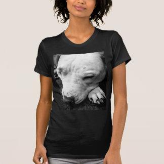pitbull do branco do cão da cicatriz de Harry Camiseta