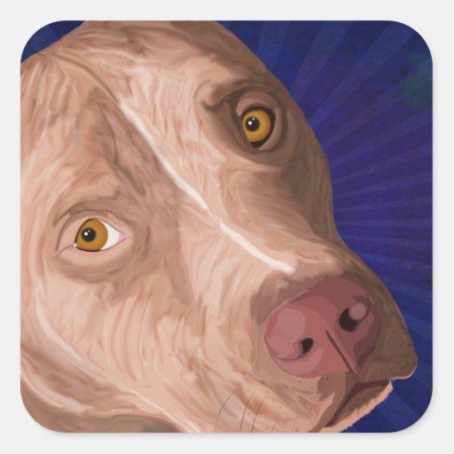 Pitbull vermelho do nariz com um fundo azul adesivo em forma quadrada