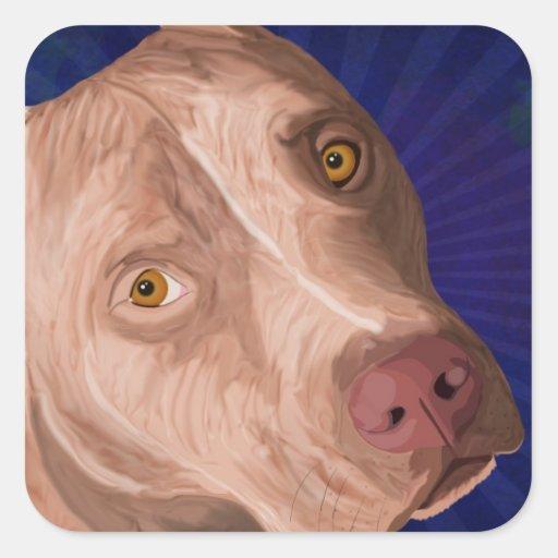 Pitbull vermelho do nariz com um fundo azul adesivo quadrado