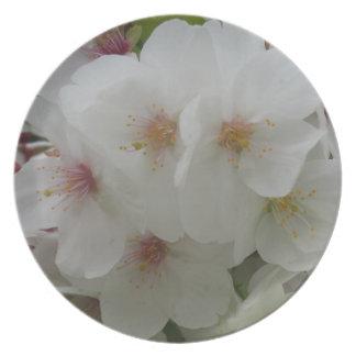 Placa da melamina da flor branca prato