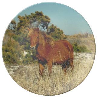 Placa de coletor para o amante do cavalo prato