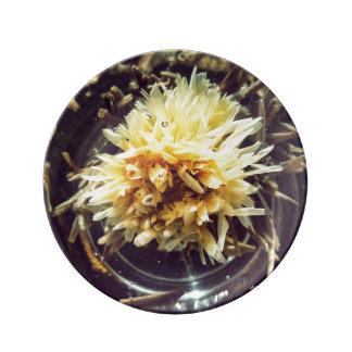 Placa decorativa de florescência da porcelana do prato de porcelana
