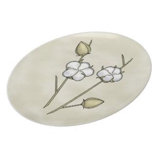 Placas da cápsula do algodão pratos