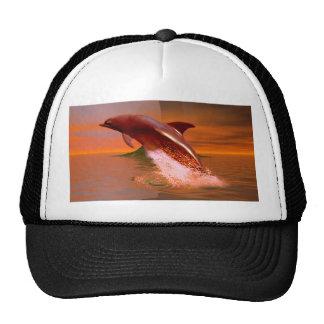 Planeta do golfinho boné