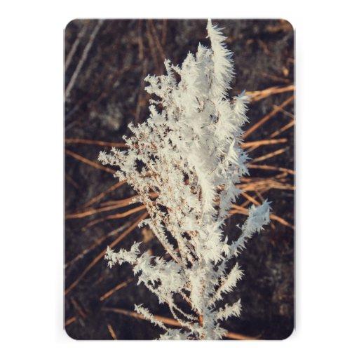 Planta congelada convites personalizado