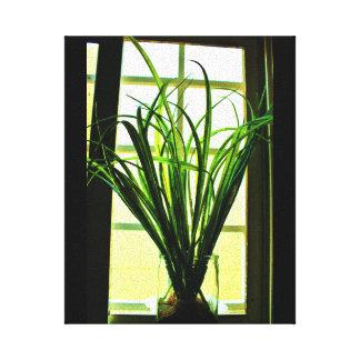 Planta da janela impressão em tela