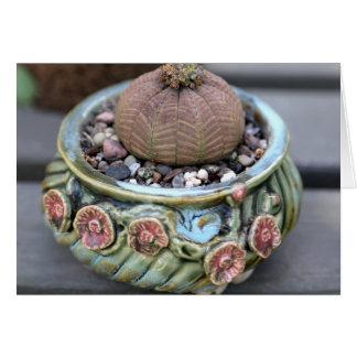 Planta pela planta perfeita - Notecard do basebol Cartoes