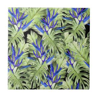 Planta tropical 2.