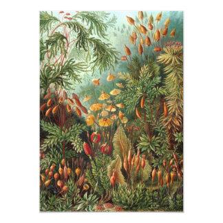 Plantas do musgo do vintage por convites de Ernst