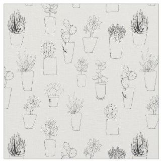 Plantas e cacto do Succulent no tecido dos potes