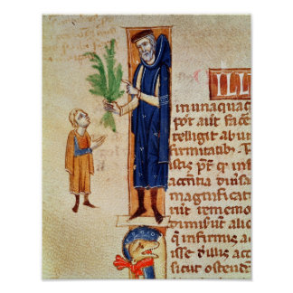 Plantas medicinais pôster