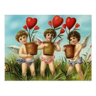 Plante algum cartão dos namorados do amor