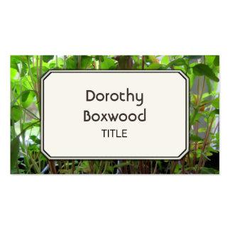 Plântulas botânicas pessoais das plantas cartão de visita
