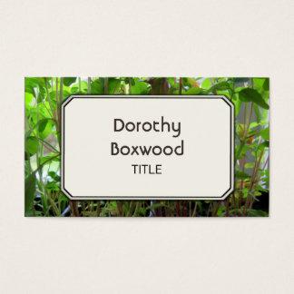Plântulas botânicas pessoais das plantas cartão de visitas