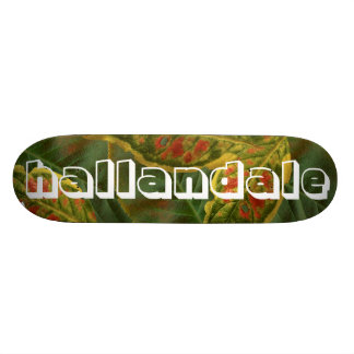 Plataforma do skate de Hallandale
