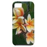 Plumeria havaiano capa tough para iPhone 5