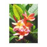 Plumeria havaiano impressão em tela canvas
