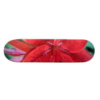 Poder vermelho do lírio skate