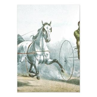 Poesia SUPERIOR do cavalo