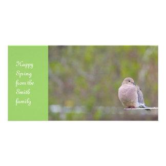 Pomba de lamentação cartão com foto