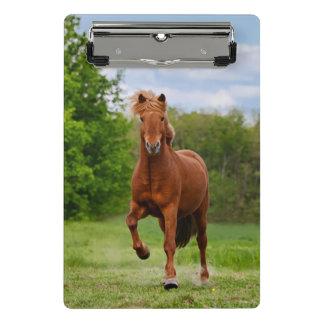 Pônei islandês em amantes engraçados de um cavalo mini prancheta