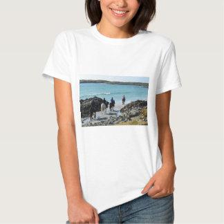 Pônei que trekking ao longo da praia t-shirt