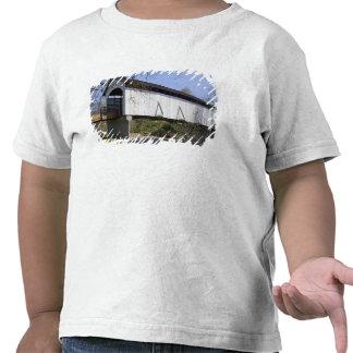 Ponte coberta da angra do antílope, construída em camisetas