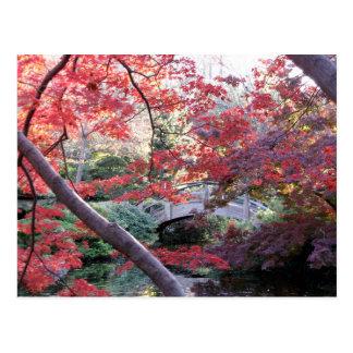 Ponte japonesa do jardim atrás dos bordos vermelho cartão postal