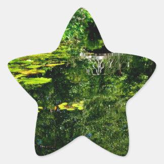 Ponte sobre a água calma adesito estrela