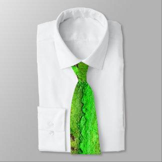 pontos e fissura gravata