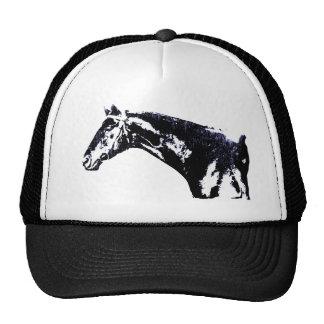 Pop art do cavalo bone