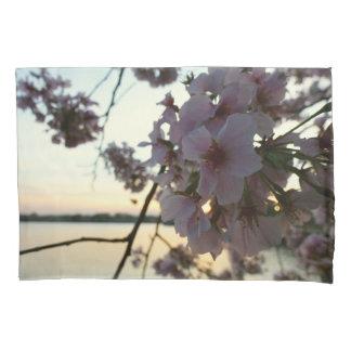 Por do sol da flor de cerejeira no Washington DC