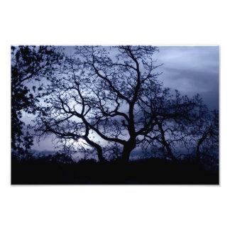 Por do sol da meia-noite impressão de foto