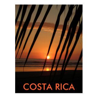 Por do sol da palma do cartão, COSTA RICA Cartão Postal