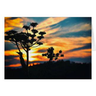 Por do sol de nosso cartão da vida