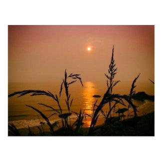 Por do sol do cartão do estado de Washington sobre